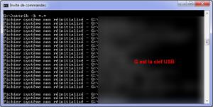 attrib_fichier_systeme_non_reinitialise